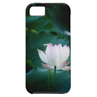 Elegant white Lotus Flower iPhone 5 Cases