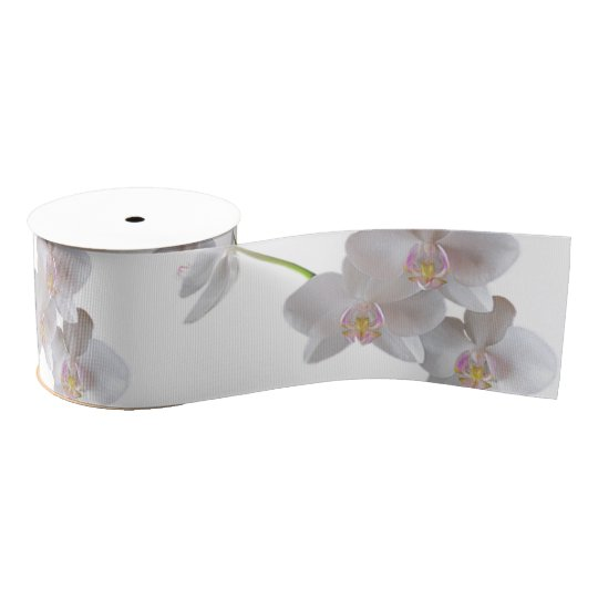 Elegant White Pink Orchids on Any Colour Grosgrain