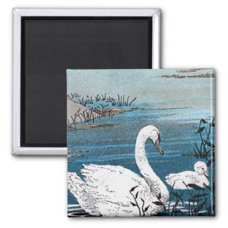 Elegant White Swan With Baby Square Magnet