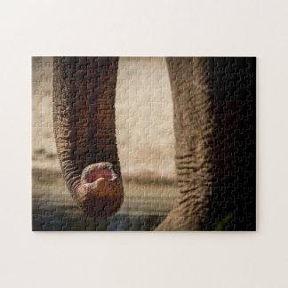 Elephant 07 Digital Art - Photo Puzzle