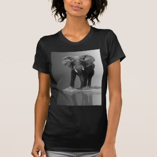 ELEPHANT #1 TEES