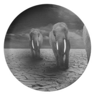 elephant-5900 dinner plates