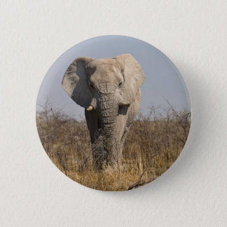 Elephant 6 Cm Round Badge
