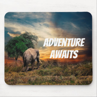 Elephant an evening in the bush with sunset mouse mat