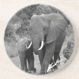 Elephant and Calf Coaster