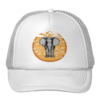 Elephant and Vintage Faded Sun Cap