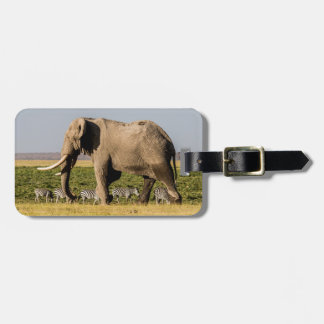 Elephant and Zebras at Waterhole Luggage Tag