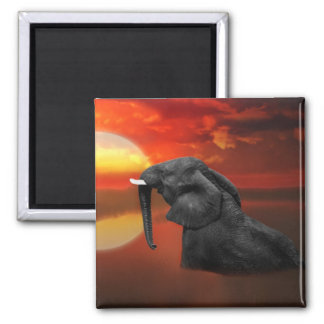 Elephant at the lake square magnet