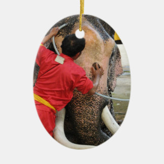 Elephant Bathtime Ayutthaya Thailand Ornaments