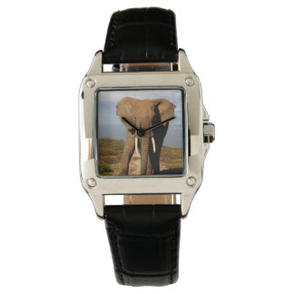 Elephant_Beach,_Ladies_Square_Leather_Watch. Watch