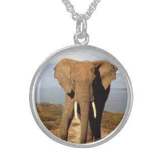 Elephant_Beach_Sterling_Silver_Pendant_Necklace Round Pendant Necklace