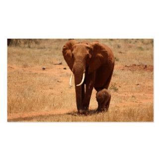 Elephant Business Card Templates