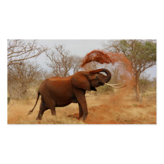 Elephant Business Cards