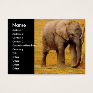 Elephant Calf Business Card