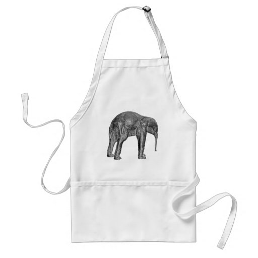 Elephant Calf in Black and White Aprons