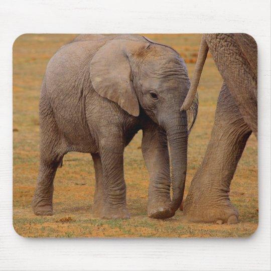 elephant calf mouse pad