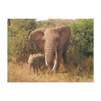 Elephant Stretched Canvas Print