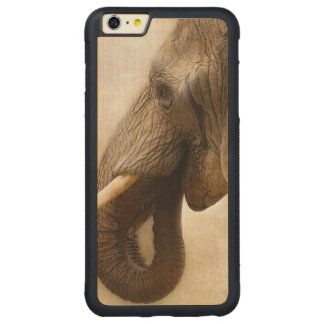 Elephant Carved Maple iPhone 6 Plus Bumper Case