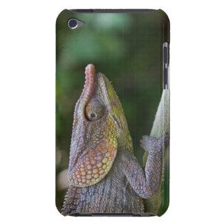 Elephant chameleon, Madagascar iPod Case-Mate Case