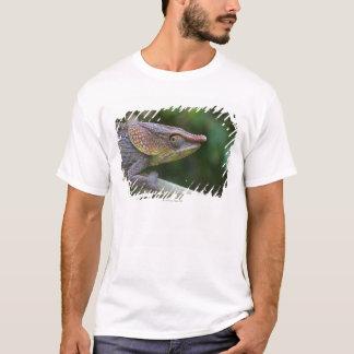 Elephant chameleon, Madagascar T-Shirt