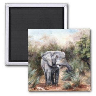 Elephant Coming Through Magnet