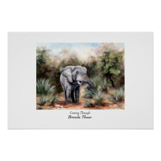 Elephant Coming Through Poster