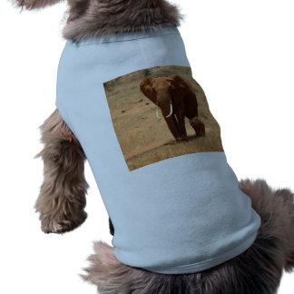 Elephant Pet Clothing