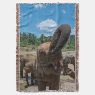 Elephant drinking water, Sri Lanka Throw Blanket