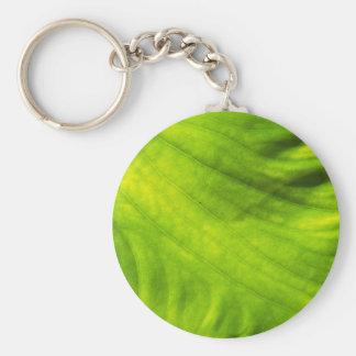 Elephant Ear Taro Key Ring Basic Round Button Key Ring