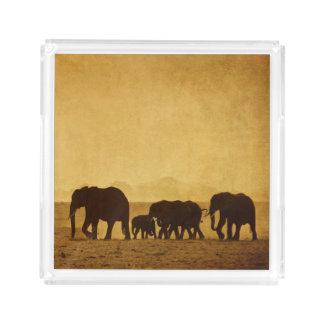 Elephant Family Acrylic Tray