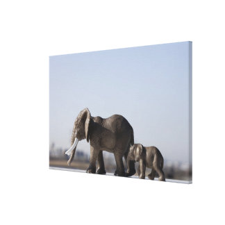 Elephant Family background blue sky Canvas Print