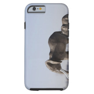 Elephant Family background blue sky Tough iPhone 6 Case