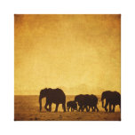 Elephant Family Gallery Wrap Canvas