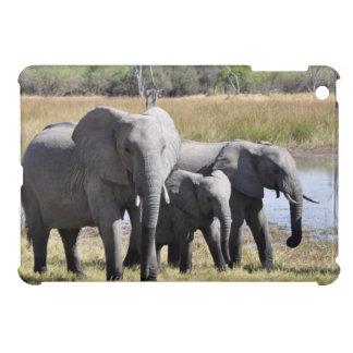 Elephant family iPad mini cases