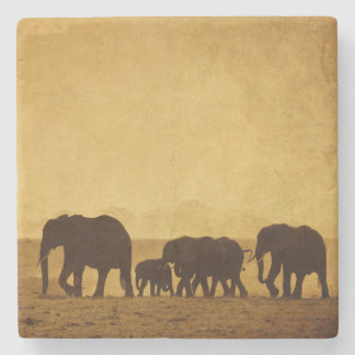 Elephant Family Stone Beverage Coaster