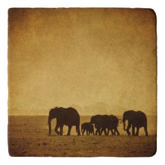 Elephant Family Trivet