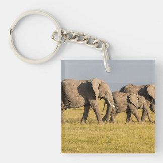 Elephant Family Walking Key Ring