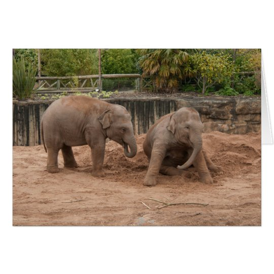Elephant Greeting Card, Baby Elephants Playing Card
