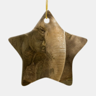 Elephant/Heffalump Christmas Ornament