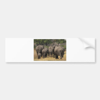 Elephant Herd Bumper Sticker