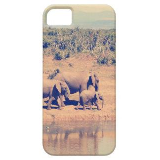 Elephant herd iPhone 5 covers