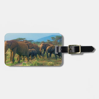 Elephant Herd Walking Luggage Tag