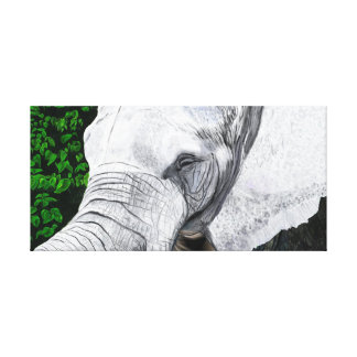 Elephant II Gallery Wrapped Canvas