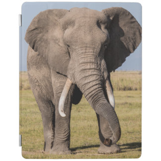 Elephant in an Aggressive Pose iPad Cover