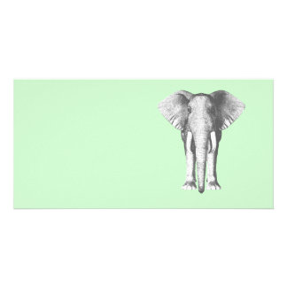 Elephant in Black and White Customised Photo Card