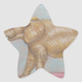 elephant in the circus star sticker