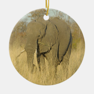 Elephant in the Tall Grass Round Ceramic Decoration