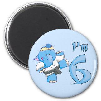 Elephant Karate 6th Birthday Magnets