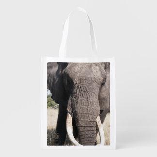 Elephant (Loxodonta africana), Abu Camp 3 Reusable Grocery Bag
