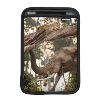 Elephant (Loxodonta) Testing Scent Of Leopard iPad Mini Sleeve